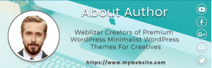 Author WordPress Plugin By Weblizer