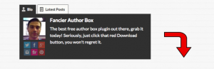 Fancier Author Box WordPress Plugin